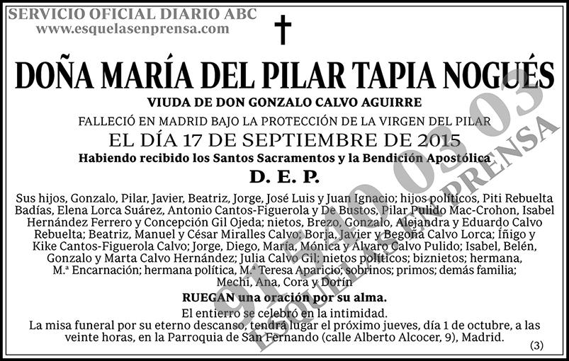 María del Pilar Tapia Nogués